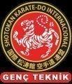 İzmir Karate Kursu-Genç Teknik Karate